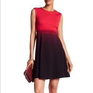 Catherine Malandrino Ombré Crew Neck Dress
